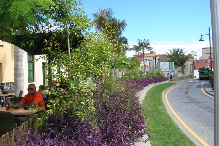 Principio de la Calle Mequinez en primer plano zona ajardinada