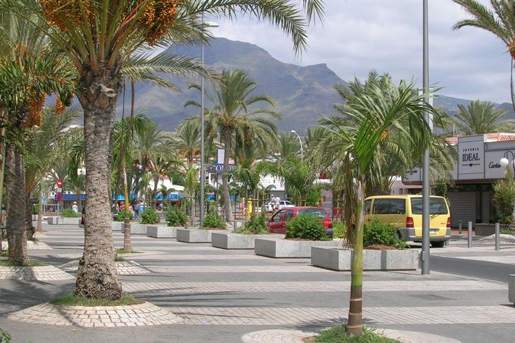 Vista de la zona peatonal de la Avenida Rafael Puig