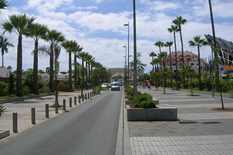 Visión general de la Avenida Rafael Puig, con zona peatonal a ambos lados de la calzada