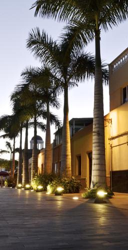 Vista del atardecer con la iluminación  integrada en los norays junto a las palmeras reales ubicadas en paralelo a las viviendas de la Calle Mequinez