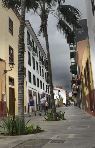 Vista de la parte peatonal de la calle Mequinez, en primer plano palmeras reales