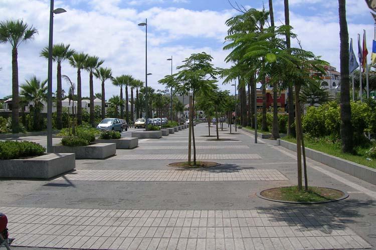 Vista de la zona peatonal de la Avenida Rafael Puig limitada por las bancos-alcorques y detalle de pavimento
